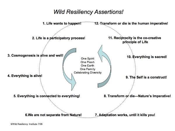 WR Assumptions