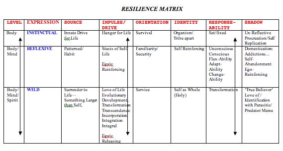 Resiliency Matrix