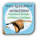 Wild Resiliency Awakening logo